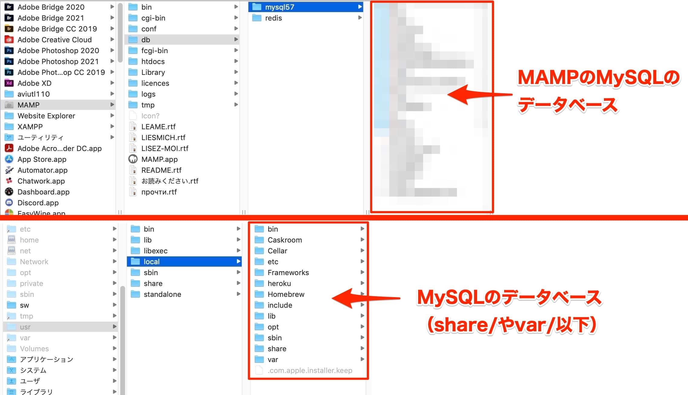 MySQLとMAMPのMySQLのディレクトリ